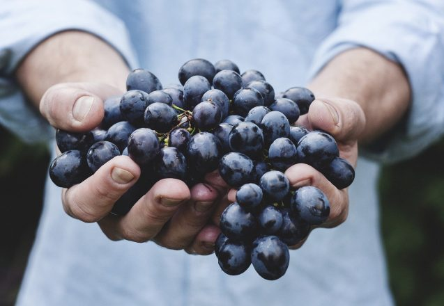 Does Choosing Organic Food Make A Difference?